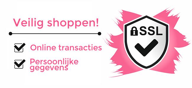 Veilig online shoppen met SSL!